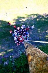 Camp_Diablerets_2012_2075