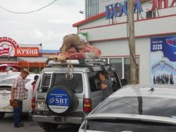 Mongolie 20160717 033502003