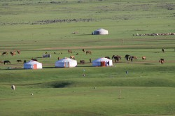 Mongolie 20160719 004750440