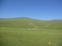 Mongolie 20160724 025735005