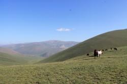 Mongolie 20160724 025855110
