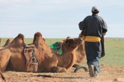 Mongolie 20160727 030024316