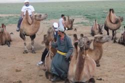 Mongolie 20160727 030919331