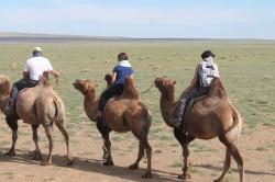Mongolie 20160727 031423339