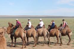 Mongolie 20160727 031433340