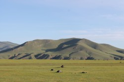 Mongolie 20160719 003700435