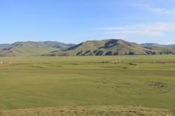 Mongolie 20160719 004644437