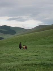 Mongolie 20160721 021110053