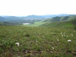 Mongolie 20160721 030604099