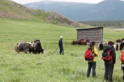Mongolie 20160721 042040176