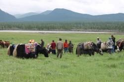 Mongolie 20160721 042102177