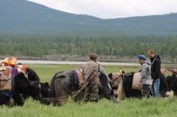 Mongolie 20160721 042136178
