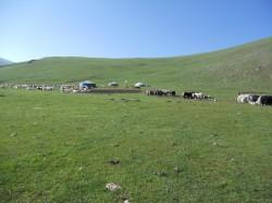 Mongolie 20160724 025735004