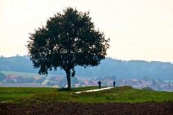 Promesses_2012_2012-09-22_15-55-41